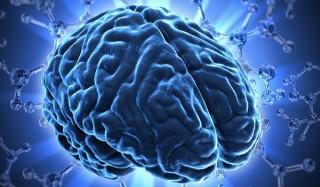 5 Малоизвестных фактов о нашем мозге