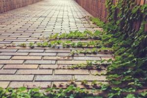 Бизнес план производства тротуарной плитки (брусчатки)