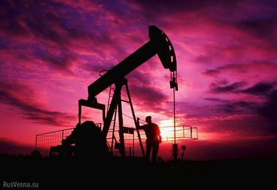 Цена нефти может упасть до 30 долларов за баррель в 2015 году. кто в этом виноват? разоблачаем теории заговоров