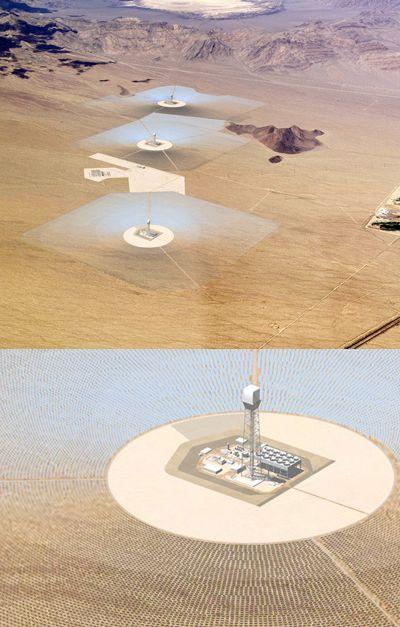 Черепахи тормознули возведение крупнейшей солнечной электростанции