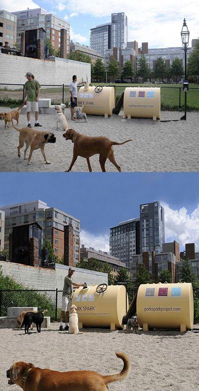 Городской парк осветили отходы выгуливаемых псов