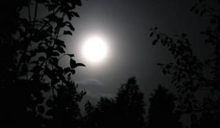 Изучено влияние ночи на людей