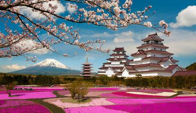 Япония: данные по индексам tankan в четвёртом квартале