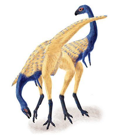 Кости и лёгкие оспаривают связь динозавров с птицами