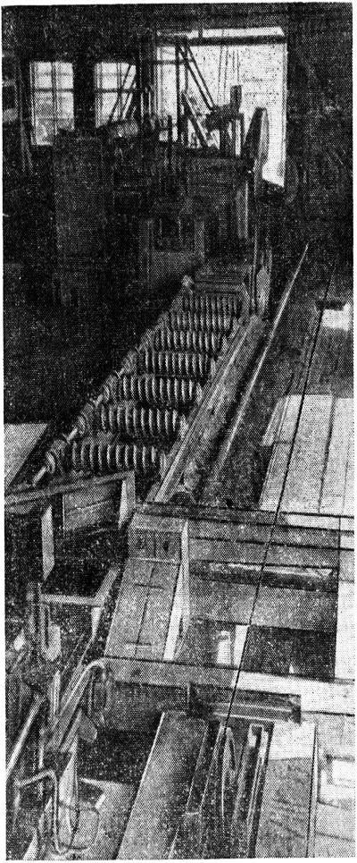 Круглопильные станки в лесопильно-раскроечиых цехах