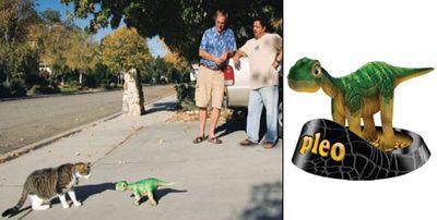 Membrana провела испытания робота-динозаврика pleo