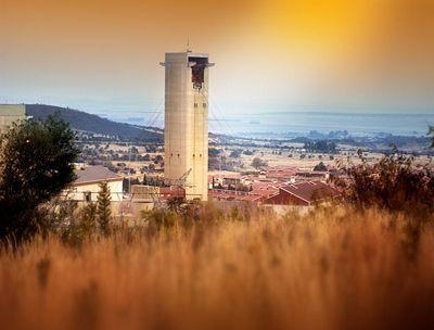 Невероятные затворники процветают в золотой тьме