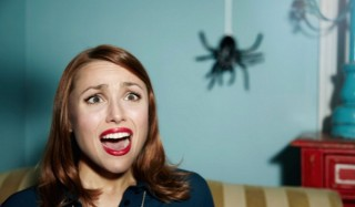 Почему женщины так боятся пауков?