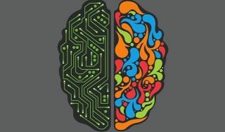 Самые известные мифы о человеческом мозге