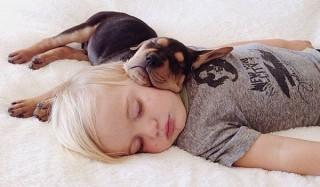 Самые забавные и интересные факты о сне