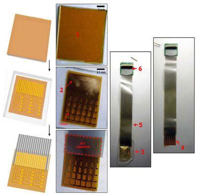 Шёлковый чип показал чудеса совместимости с живым мозгом