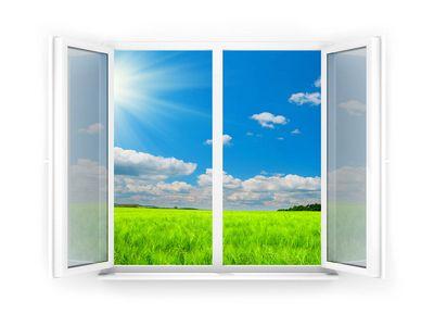 Слышалили вы когда-нибудь об окне овертона ?