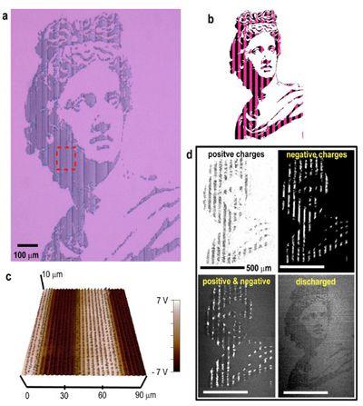 Универсальный нанопринтер печатает картины днк-чернилами