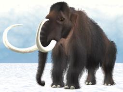 Вымершие мамонты начали борьбу за выживание