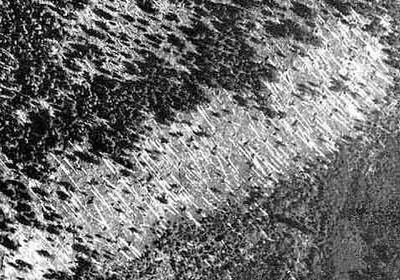 Западные эксперты не верят, что на тунгуске найдены обломки нло